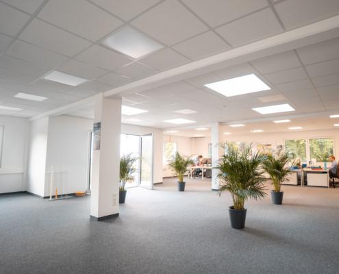 großraumbüro mit grünen pflanzen