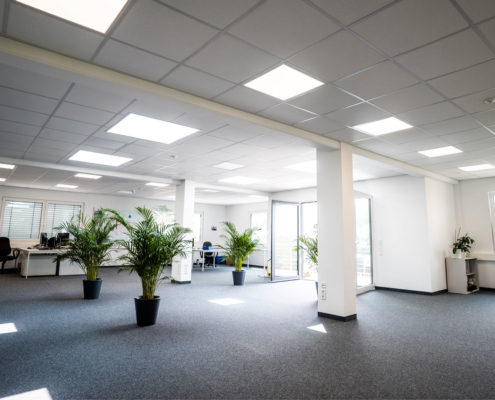 großraumbüro mit grünpflanzen
